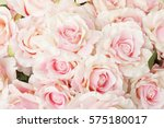 Stock photo pink rose for backgrounds 575180017