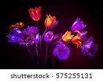Neon Colors In The Dark. Tulip...