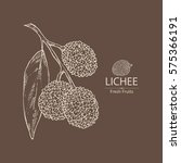 background with lichee. hand... | Shutterstock .eps vector #575366191
