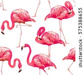 tropical bird flamingo... | Shutterstock .eps vector #575388655