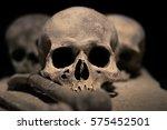 skulls | Shutterstock . vector #575452501