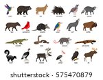 large set of animals of north... | Shutterstock .eps vector #575470879