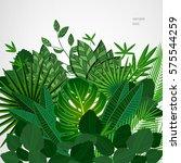 frame made of leaves on a white ... | Shutterstock .eps vector #575544259