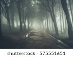 forest covered by mist. sintra... | Shutterstock . vector #575551651