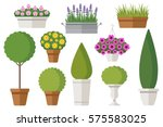 Vector Set Of Outdoor Potted...