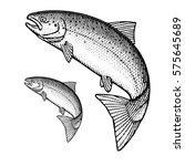 jumping atlantic salmon | Shutterstock .eps vector #575645689