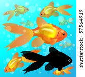 eight gold fish  one black one  ... | Shutterstock . vector #57564919