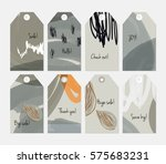 seasonal with sketched leaf... | Shutterstock .eps vector #575683231