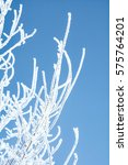 beautiful rime covered the... | Shutterstock . vector #575764201