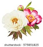 White And Red Peonies Flower...