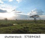 Panoramic View On Savanna Plai...
