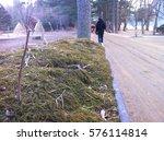 background | Shutterstock . vector #576114814