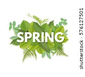 spring letter with green leaves.... | Shutterstock .eps vector #576127501