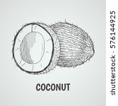 coconut. hand draw style.... | Shutterstock .eps vector #576144925