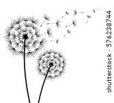 two stylized black dandelions... | Shutterstock .eps vector #576238744