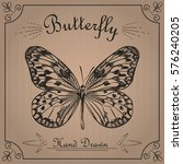 butterfly isolated on the...   Shutterstock .eps vector #576240205