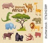 animals of africa  rhino  lion  ... | Shutterstock .eps vector #576242389
