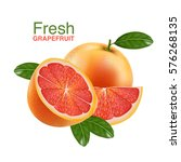 fresh grapefruit vector    Shutterstock .eps vector #576268135