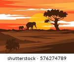 africa landscape sunset with... | Shutterstock .eps vector #576274789