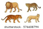 Set Of Stylized Vector Big Cats....
