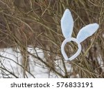 Plushy Rabbit Ears