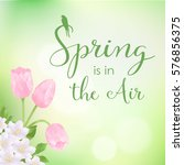 vector spring card with... | Shutterstock .eps vector #576856375