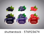 realistic berry labels set with ... | Shutterstock .eps vector #576923674