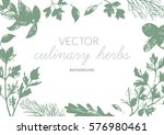 culinary herbs background.... | Shutterstock .eps vector #576980461