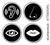 the sense organs icons   vector ... | Shutterstock .eps vector #577005391