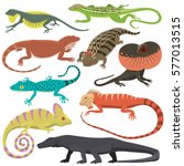 different kind of lizard... | Shutterstock .eps vector #577013515