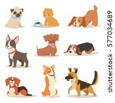 Stock vector funny cartoon dogs characters different breads illustration 577034689
