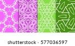 seamless set floral pattern.... | Shutterstock .eps vector #577036597