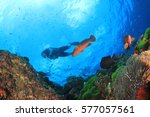 scuba dive coral reef. divers...   Shutterstock . vector #577057561