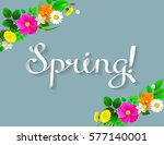 white lettering spring like... | Shutterstock .eps vector #577140001