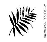 palm leaf vector illustration.... | Shutterstock .eps vector #577141369