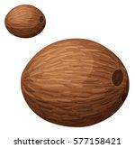 Whole Coconut. Cartoon Vector...