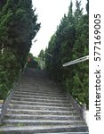 Small photo of Concrete stairs and trees growing alongside the way.