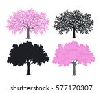 sakura  cherry blossom tree in... | Shutterstock .eps vector #577170307
