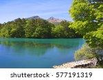 a beautiful swamp of japan.  | Shutterstock . vector #577191319