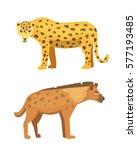 cute jaguar and hyena stands... | Shutterstock .eps vector #577193485