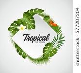 tropical vector illustration... | Shutterstock .eps vector #577207204