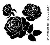 silhouette of rose on a white... | Shutterstock .eps vector #577231654