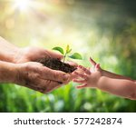 old man giving young plant to a ... | Shutterstock . vector #577242874