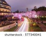 romantic scenery of illuminated ... | Shutterstock . vector #577340041