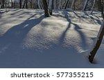 winter snow garden in sofia... | Shutterstock . vector #577355215