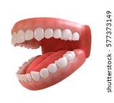 3d rendering of human teeth ... | Shutterstock . vector #577373149