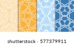 set of seamless decorative... | Shutterstock .eps vector #577379911