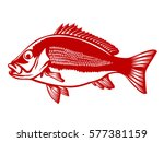 Red Snapper With Rods And Ocea...