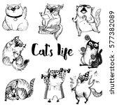 set of funny cats.vector sketch ... | Shutterstock .eps vector #577382089