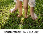 mother and baby feet walking on ...   Shutterstock . vector #577415209